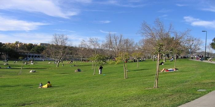 pan-pacific-park